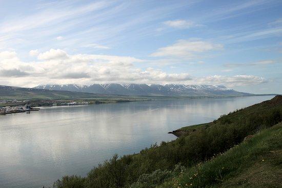 Estuary of the river Eyjafjardará