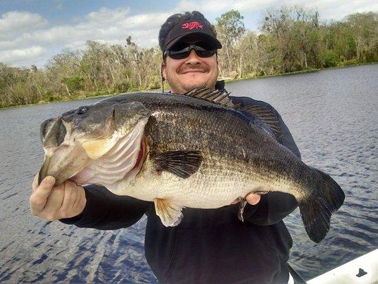 Lake okeechobee bass fishing updated 2018 top tips before for Lake okeechobee bass fishing