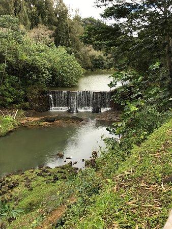Kilauea, HI: photo4.jpg