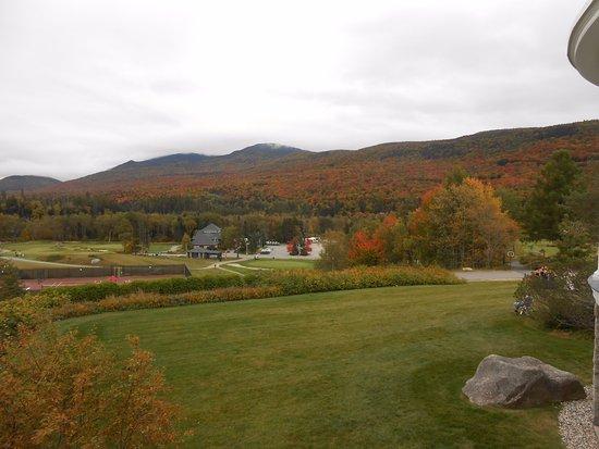 Omni Mount Washington Resort: Ground level view of fall foliage