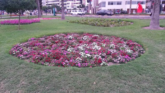 Jardines de Flores - Picture of Costa Verde, Lima - TripAdvisor