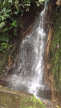 Calima Lake: Pequeña caida de agua...agua deliciosa fria y fresca