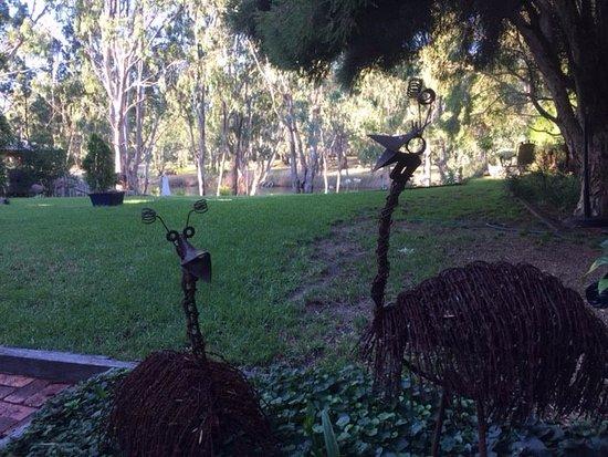 Cottages On Edward Deniliquin Australien Omd 246 Men Och