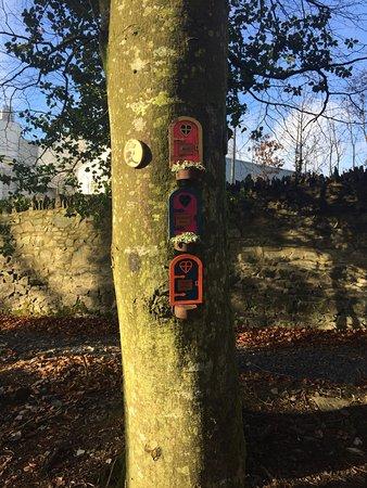 Cootehill, Irlandia: photo1.jpg