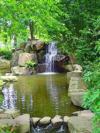 Dalles rondes sur l 39 eau photo de jardin japonais nantes tripadvisor for Jardin japonais nantes