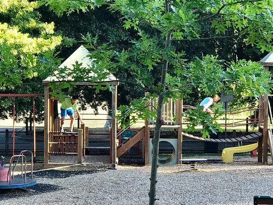 Lynden Park