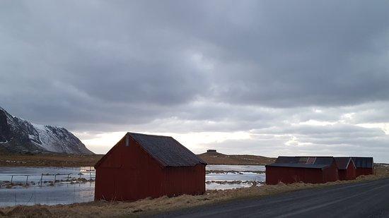 Nordland, Noorwegen: 20170123_143924_large.jpg