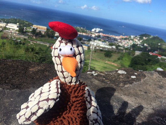 This is gobbler he came along for the sightseeing, on top of Fort frederick