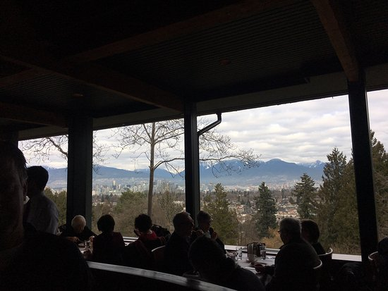 Seasons in the Park: Our view and the yummy salad
