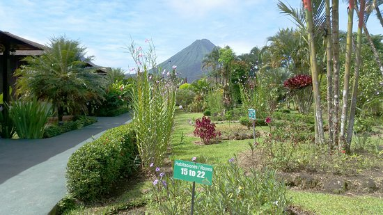 Hotel Arenal Montechiari: A view of The Arenal Volcano from Hotel.