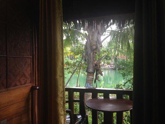 Loboc River Resort: photo5.jpg