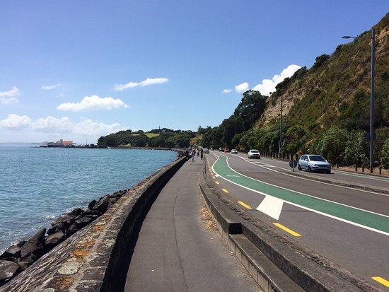 Tamaki Drive
