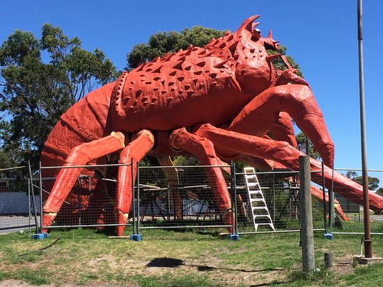 a0e89db8ec photo0.jpg - Picture of The Big Lobster, Kingston SE - TripAdvisor