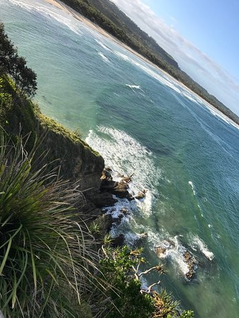 Broken Head, Австралия: photo3.jpg