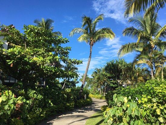 Radisson Blu Resort Fiji January 2017