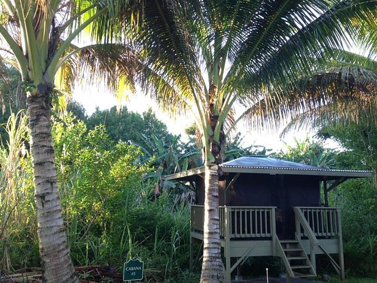 Pepeekeo, Havaí: Cabana