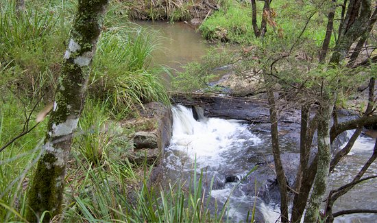 Killarney, Avustralya: Photos taking along the walk