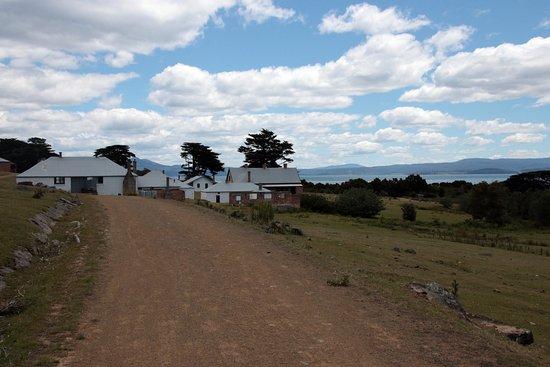 Tasmanien-bild