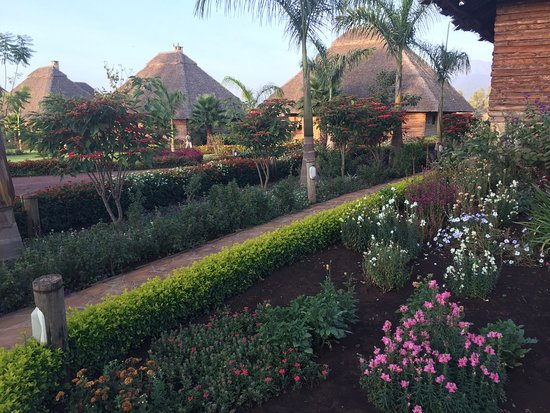 Neptune Ngorongoro Luxury Lodge: photo3.jpg