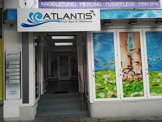 Atlantis Fishspa