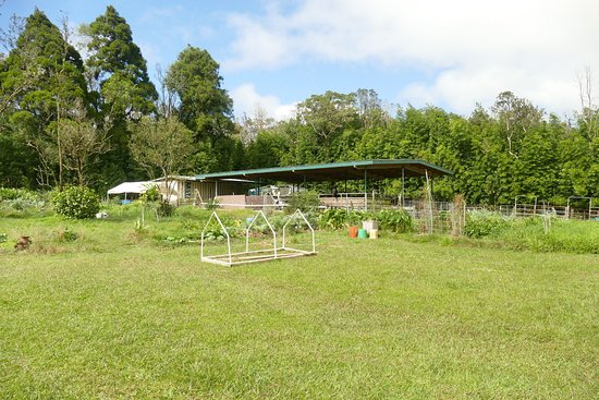 Aloha Happy Place: the farm