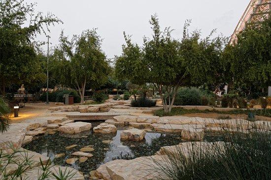 Steingarten  der Steingarten - Picture of Mushrif Central Park, Abu Dhabi ...