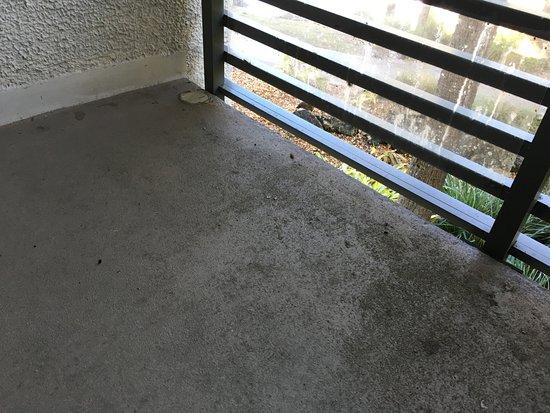 Port Saint Lucie, FL: Le balcon très accueillant de ma chambre (bis)