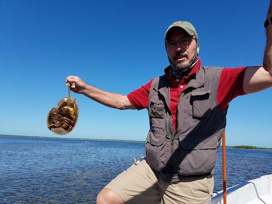 Ecab Explorer : Eric, our tour guide, holding a crab.