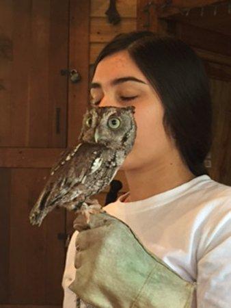 Jupiter, FL: Animal Encounter