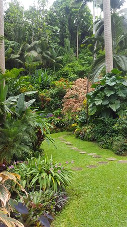 Hunte's Gardens: Garden walk