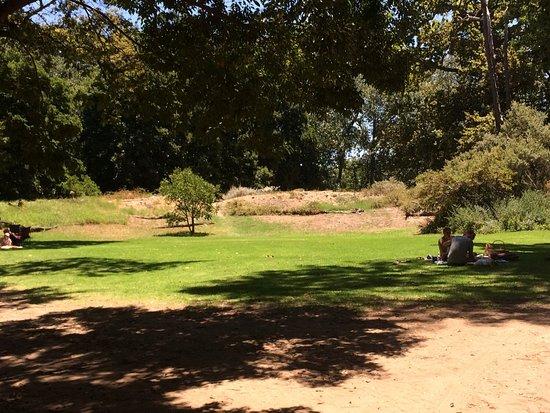 Solms-Delta Farm Tours: photo1.jpg