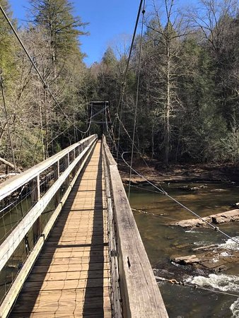On The Swinging Bridge Picture Of Toccoa River Swinging