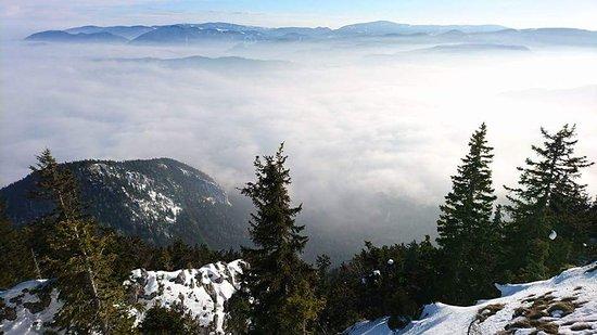 Reichenau an der Rax, Austria: FB_IMG_1485716140264_large.jpg