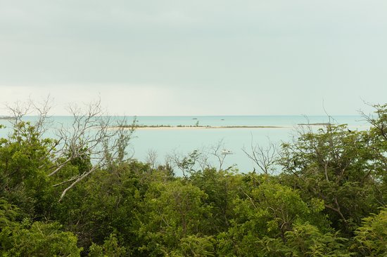 Long Island: the view at Salt Pond