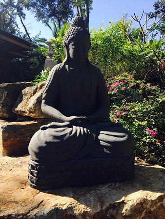 The Bodhi Tree Yoga Resort: photo4.jpg