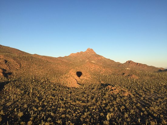 Tucson Balloon Rides: Shadow of the balloon over saguaros.
