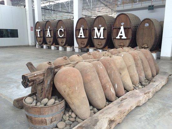 Tacama: Bellissimo posto  Ottimo menù  Ottimo Vino Ottimo Servizio Se si è in zona Assolutamente da visi