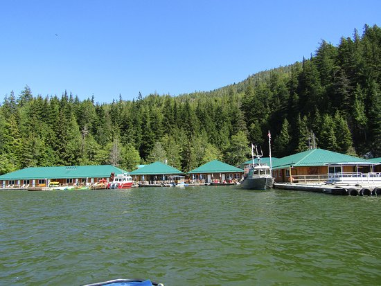 Glendale Cove, Канада: Knight Inlet Lodge