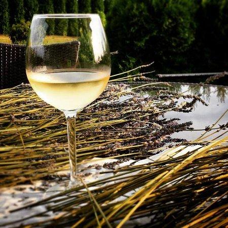 Rokycany, Repubblica Ceca: Moravská vína z Velkopavlovické oblasti v nabídce