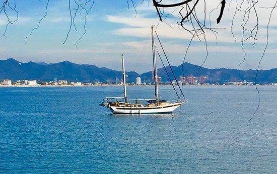 Dolphin Cove Inn : photo4.jpg