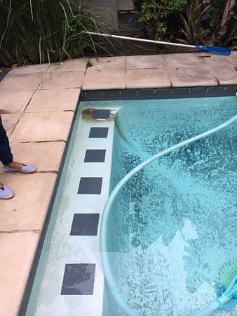 Stanger, South Africa: Pool with several stains.
