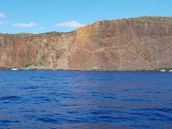 Hawaiian Rafting Adventures : 20170126_093414_large.jpg