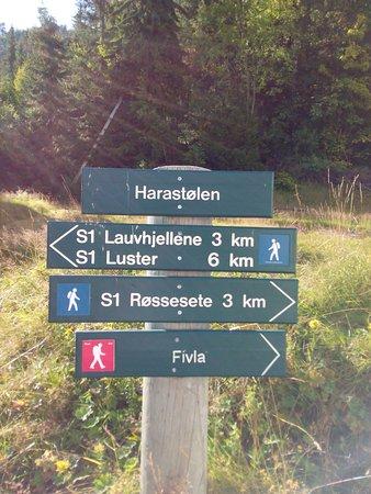 Luster Municipality
