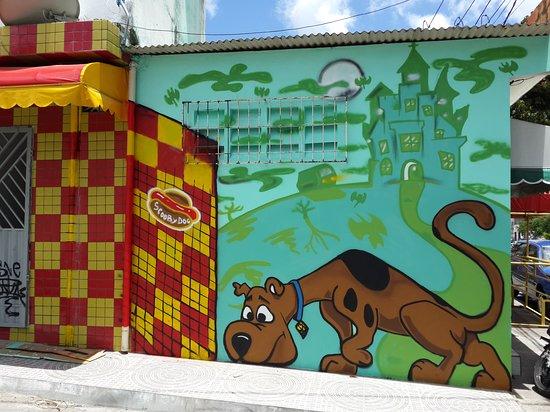 Simoes Filho, BA: Scooby Dog