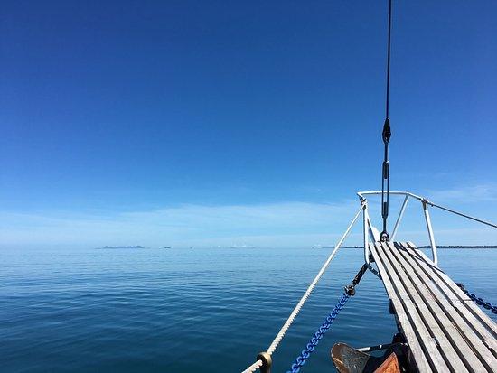 Schooner Whale's Tales : photo0.jpg