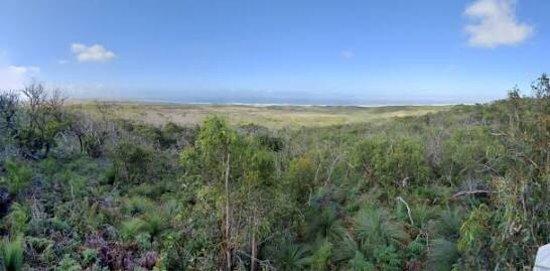 Cape Bridgewater, Australia: Mount Richmond National Park