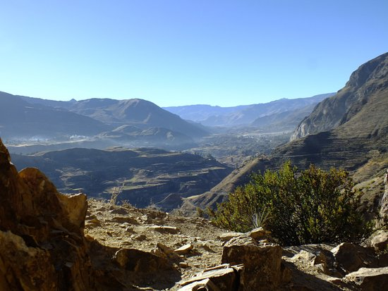 Colca Canyon Photo
