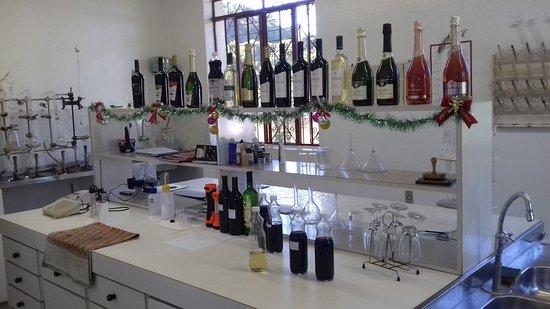 Cooperativa Vinícola São João