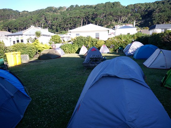 It's tent city atm at Rowena's Lodge! This is a view looking towards Mount Victoria.