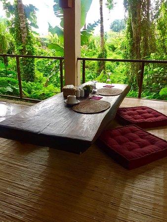 Junjungan Ubud Hotel and Spa: photo2.jpg